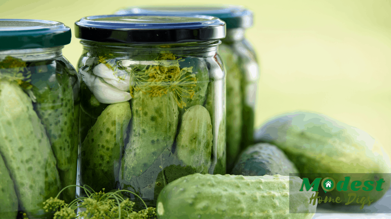 do pickles have calories