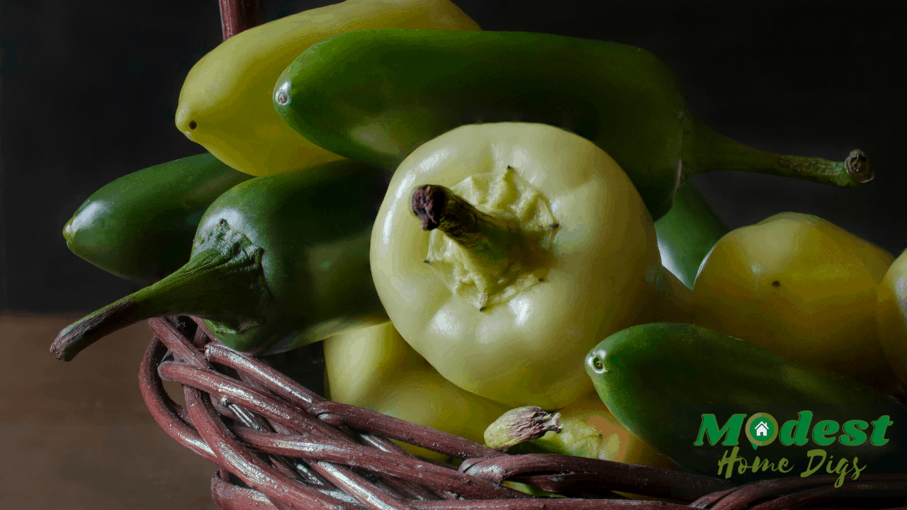 How To Pickle Banana Peppers Like Subway?